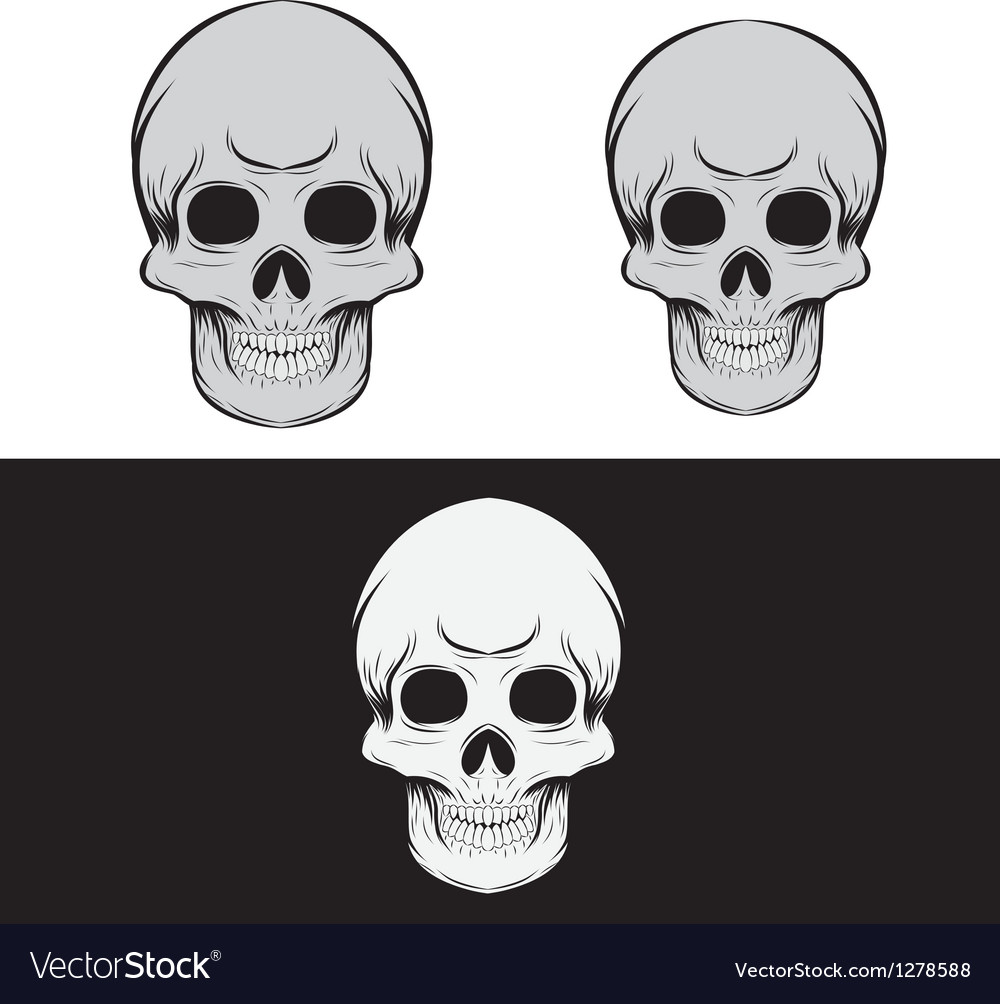 Black and gray skull vector   Price: 1 Credit (USD $1)