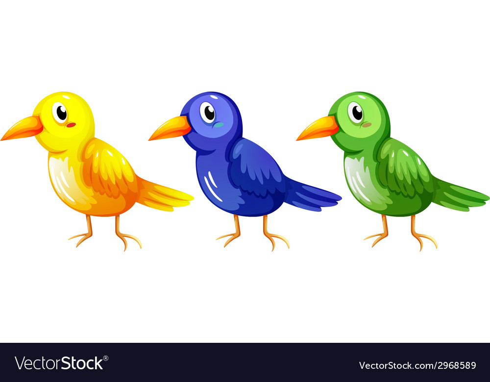 Three colourful birds vector | Price: 1 Credit (USD $1)