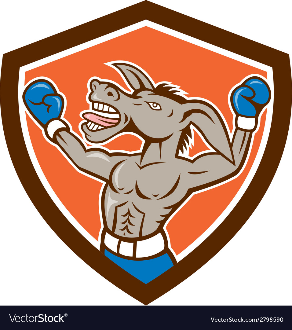 Donkey boxing celebrate shield cartoon vector | Price: 1 Credit (USD $1)