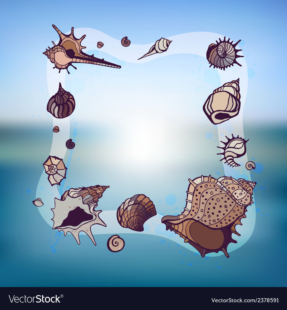 Frame of seashells vector | Price: 1 Credit (USD $1)