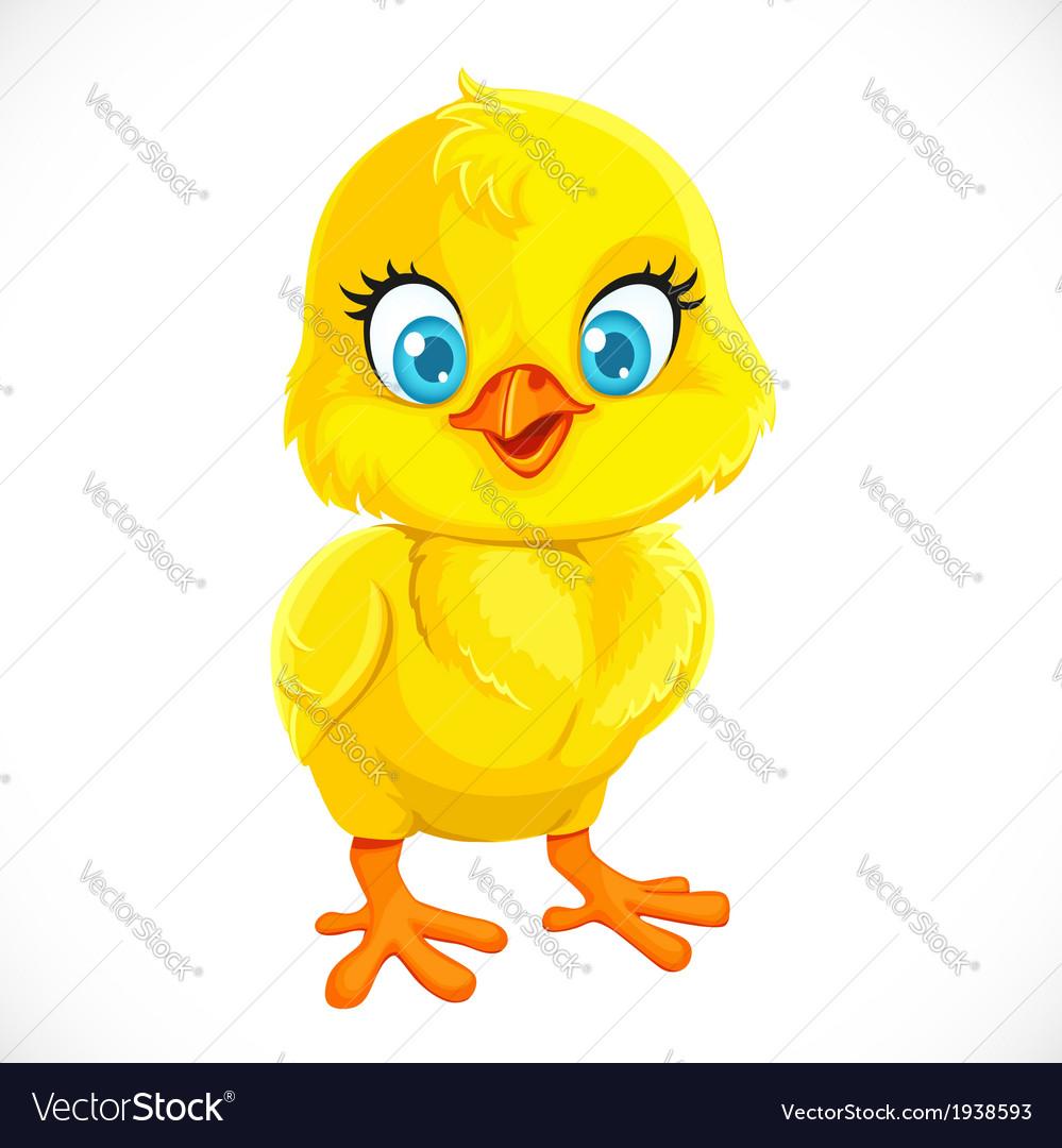 Cute yellow cartoon baby chicken vector | Price: 1 Credit (USD $1)