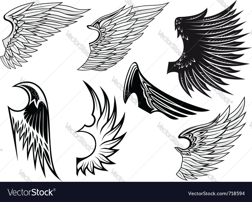 Heraldry wings set vector | Price: 1 Credit (USD $1)