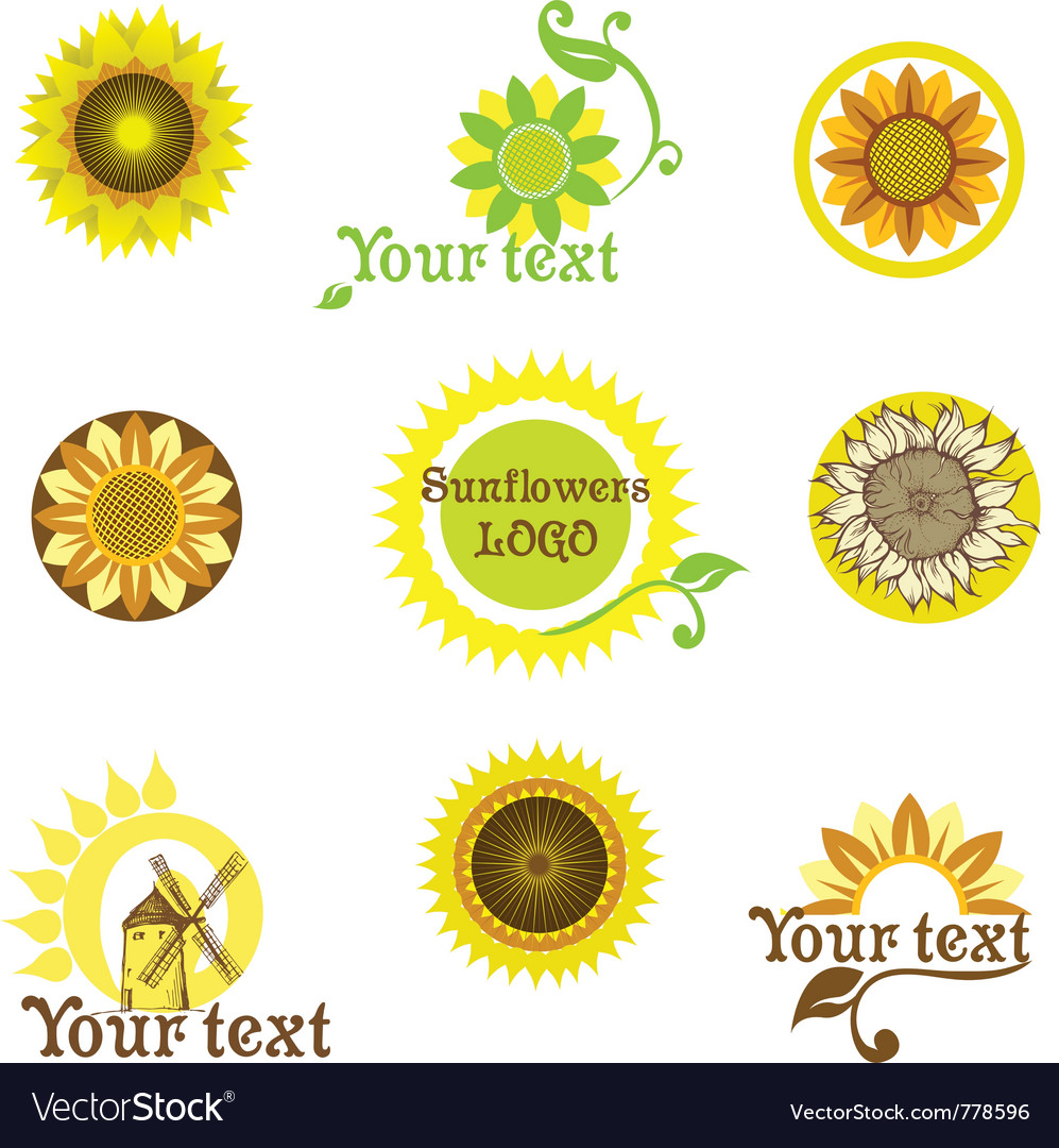 Stylized sunflowers vector | Price: 1 Credit (USD $1)
