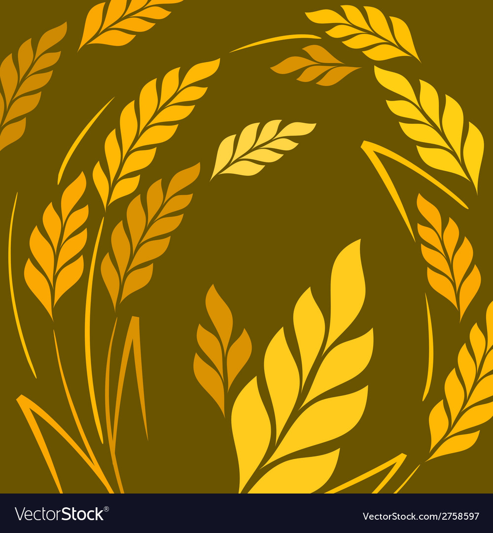 Ears of wheat background on vector | Price: 1 Credit (USD $1)