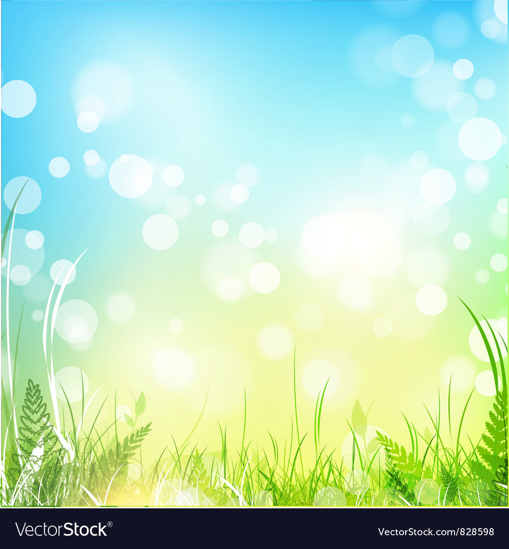 Spring or summer meadow vector | Price: 1 Credit (USD $1)