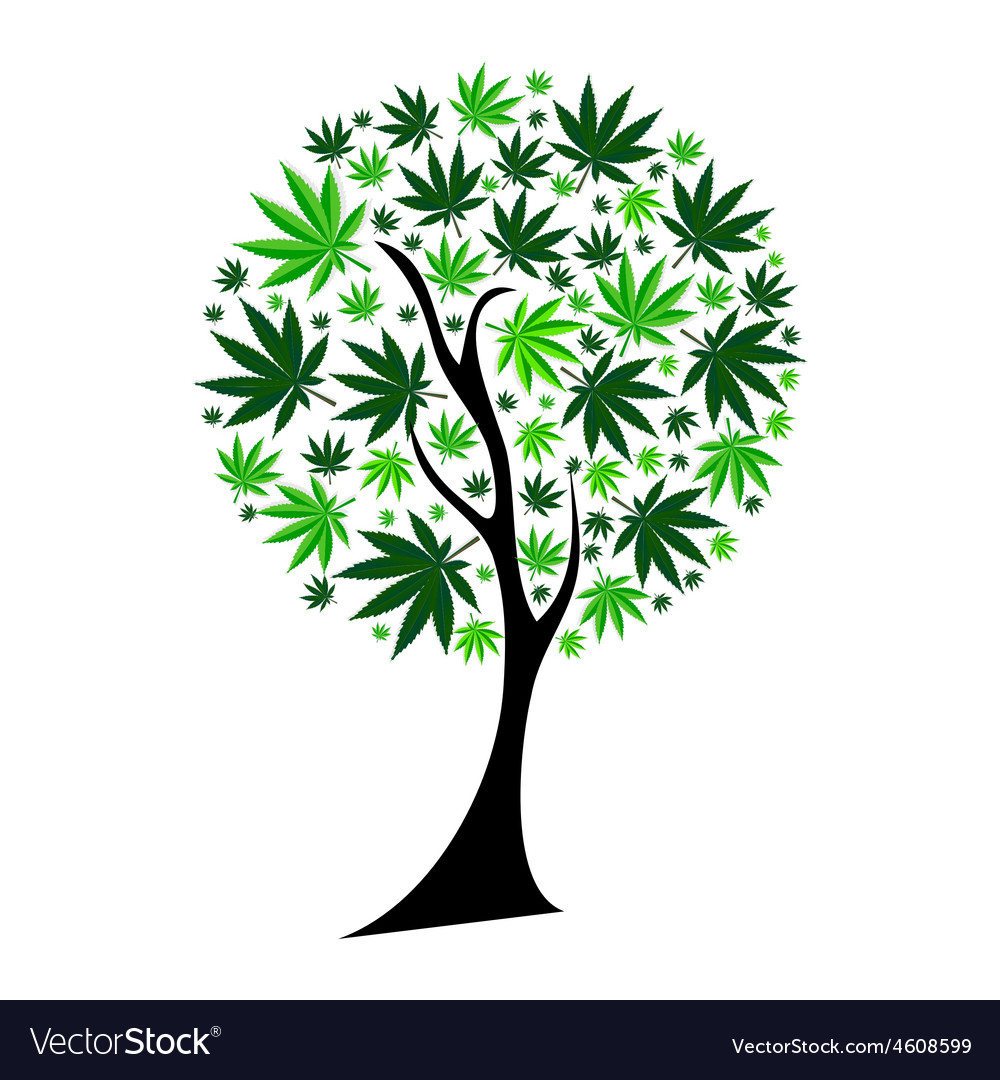 Abstract cannabis tree background vector