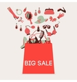 Shopping bag big sale vector