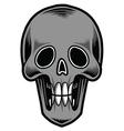 Skull-tattoo vector