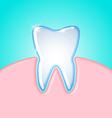 Tooth in gum vector