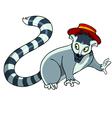 Cartoon raccoon in a hat vector