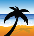 Palm on the beach color vector