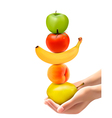 Hands holding group of fresh fruit dieting concept vector