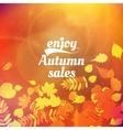 Autumn sale design template vector