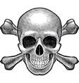 Skull and crossbones figure vector