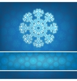 Christmas snowflake applique background  eps8 vector