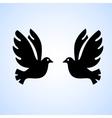 Black bird isolated vector