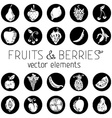 Set of round icons with fruits and berries vector