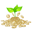 Gold coins sprout plants vector