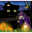 Witch near the house vector