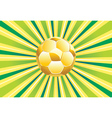 Soccer ball on green background2 vector