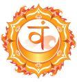 Second svadhisthana chakra vector