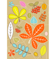 Colored autumn leaves vector