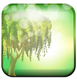 A tree inside a green square vector