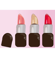 Set of colorful lipstick for makeup vector