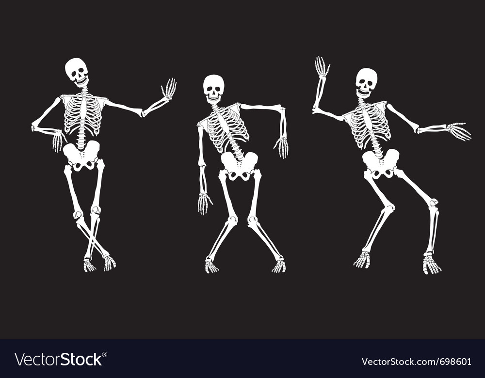 Skeletons vector | Price: 1 Credit (USD $1)