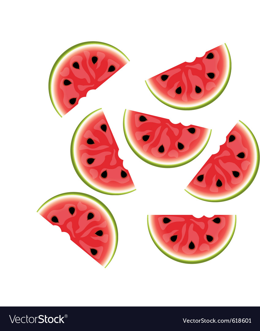 Watermelon background isolated vector | Price: 1 Credit (USD $1)