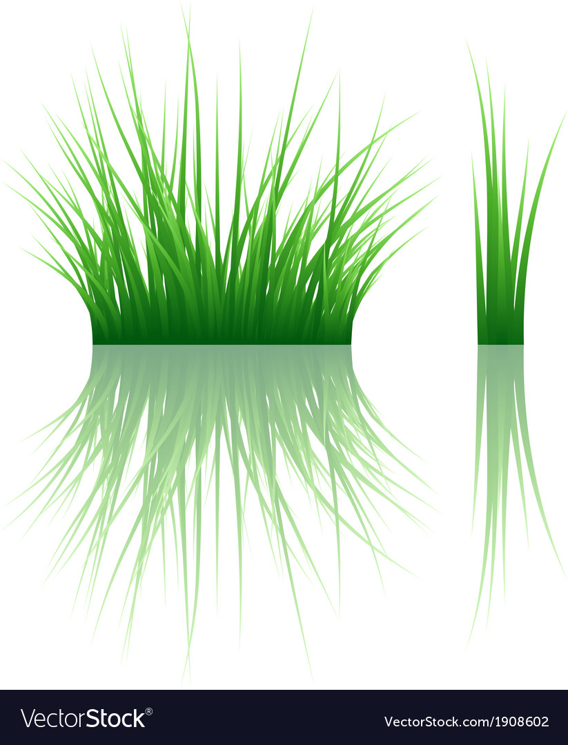 Reflected grass pattern vector | Price: 1 Credit (USD $1)