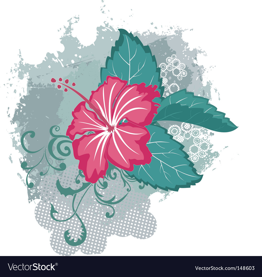 Grunge hibiscus flower vector | Price: 1 Credit (USD $1)