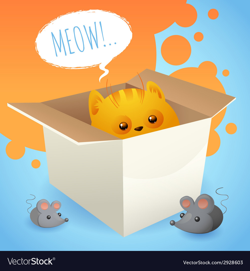 Kitten in box vector | Price: 1 Credit (USD $1)