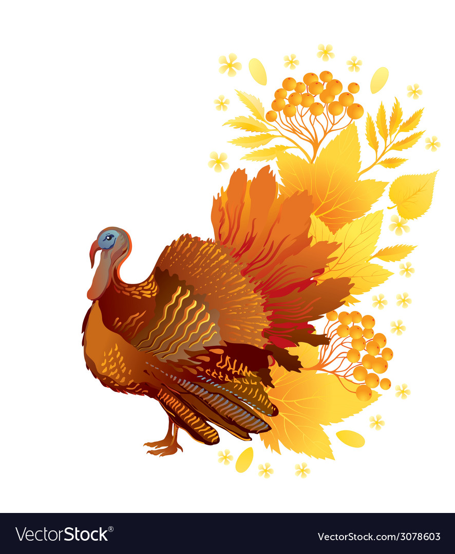 Thankgiving card with turkey vector | Price: 1 Credit (USD $1)