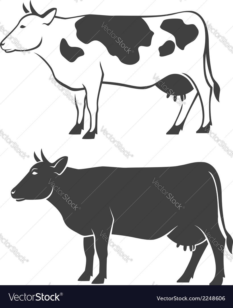 Two cows vector | Price: 1 Credit (USD $1)