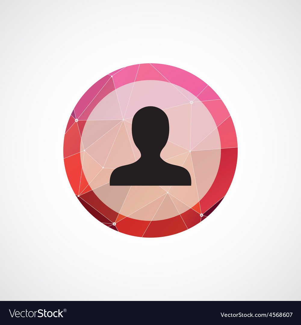 Profile circle pink triangle background icon vector