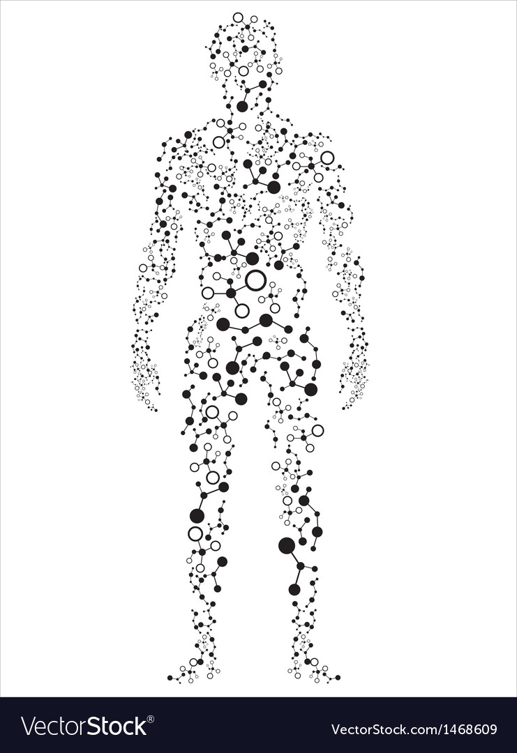 Human body molecular concept vector | Price: 1 Credit (USD $1)
