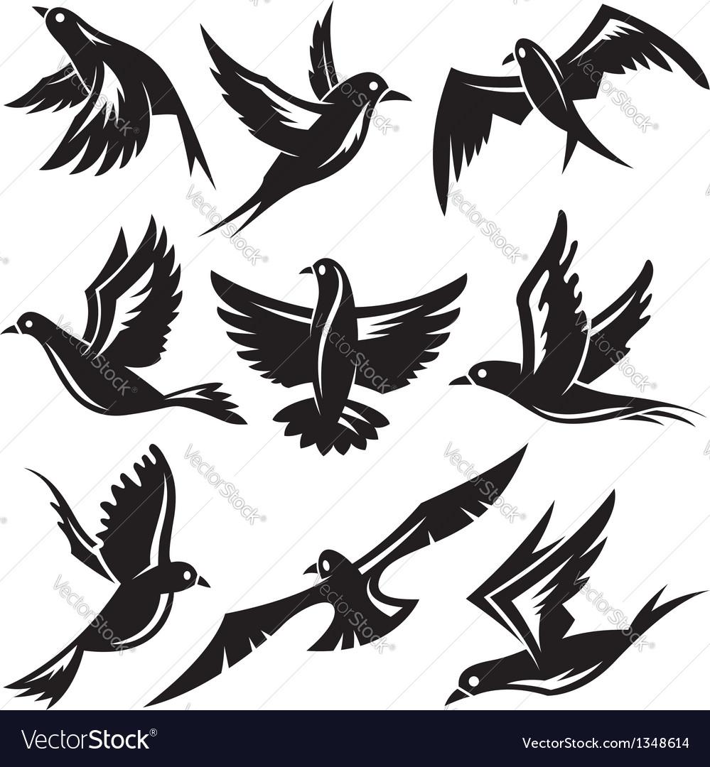 Set of birds vector | Price: 1 Credit (USD $1)