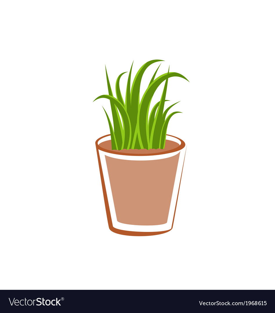 Flowerpot with green grass plants vector | Price: 1 Credit (USD $1)