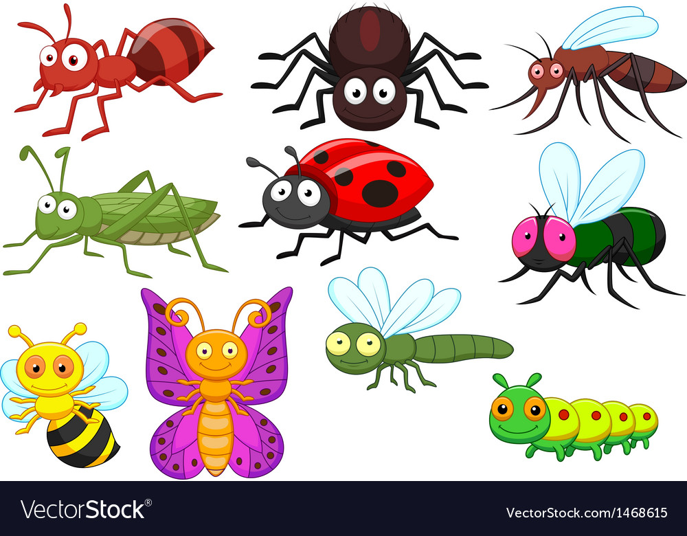 Insect cartoon collection set vector | Price: 1 Credit (USD $1)