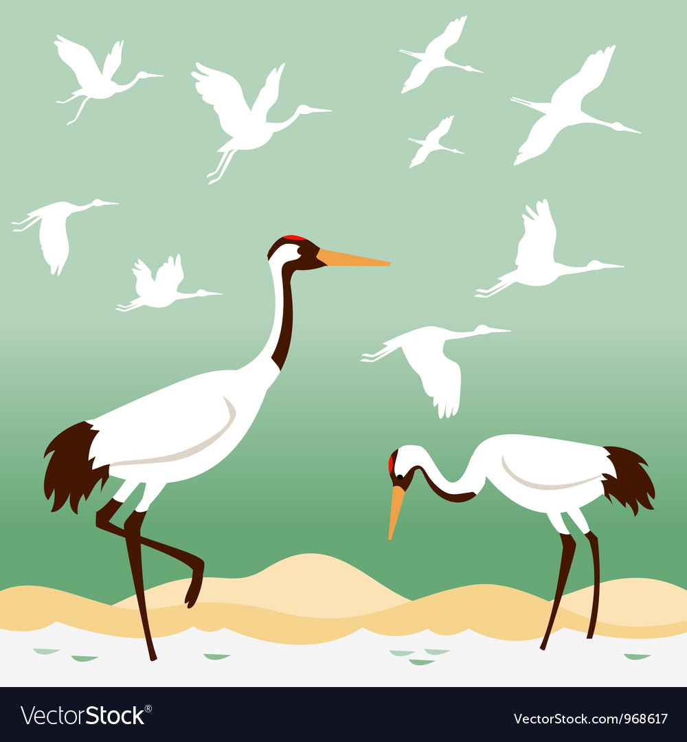 Set of flying birds vector | Price: 1 Credit (USD $1)