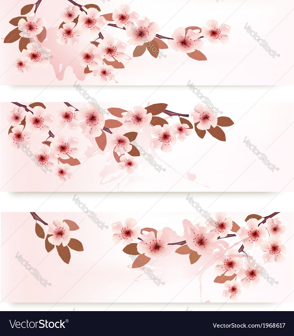 Three spring banners with blossoming branches with vector | Price: 1 Credit (USD $1)