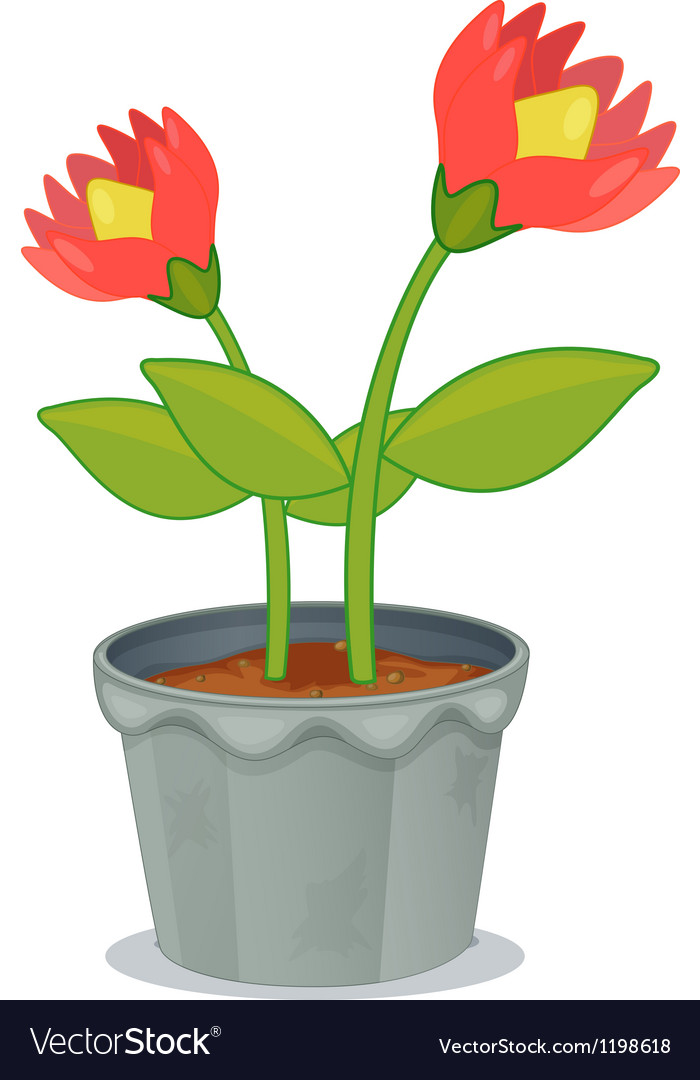 A pot of plant with flower vector | Price: 1 Credit (USD $1)