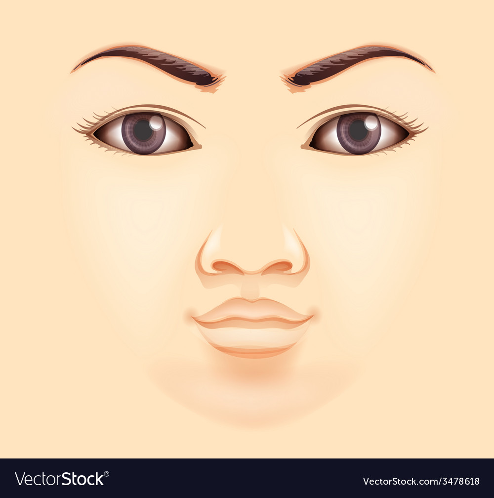 Human face vector | Price: 1 Credit (USD $1)