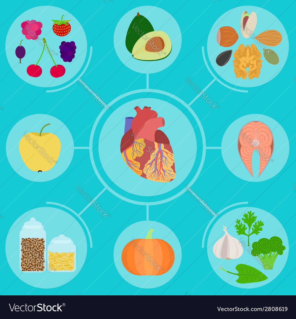 Infographics of food for helpful for healthy heart vector | Price: 1 Credit (USD $1)