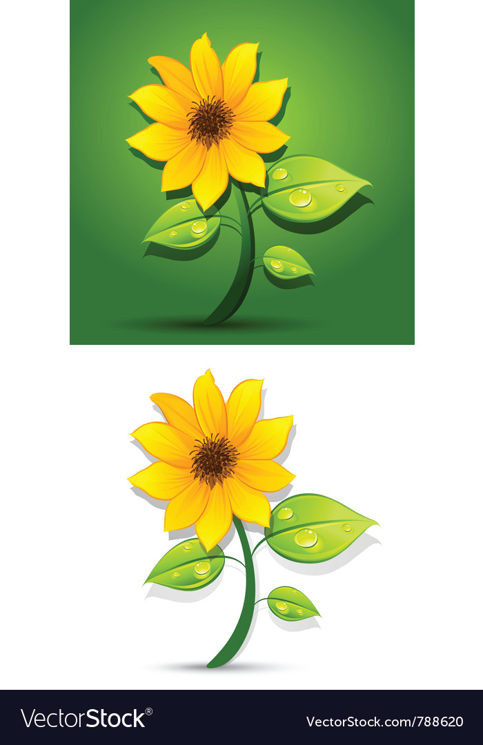 Blooming sunflowers vector | Price: 3 Credit (USD $3)