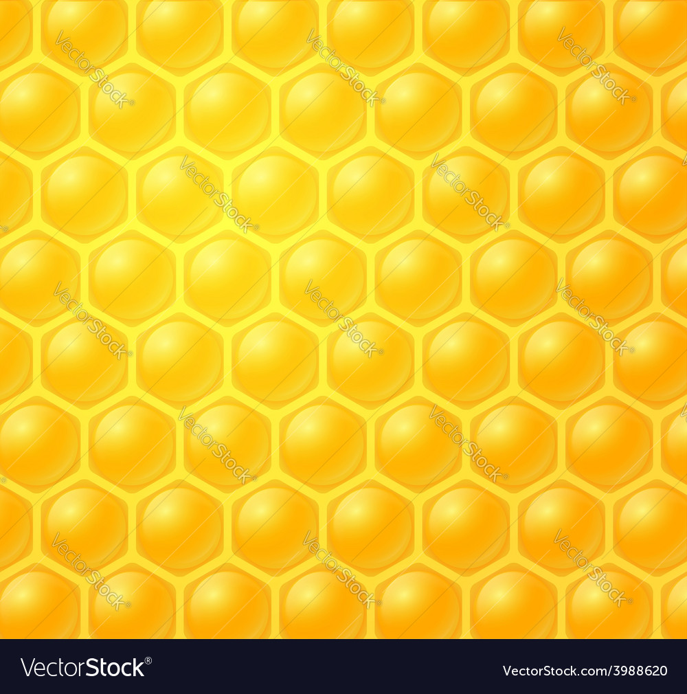 Honey making in honeycombs vector | Price: 1 Credit (USD $1)