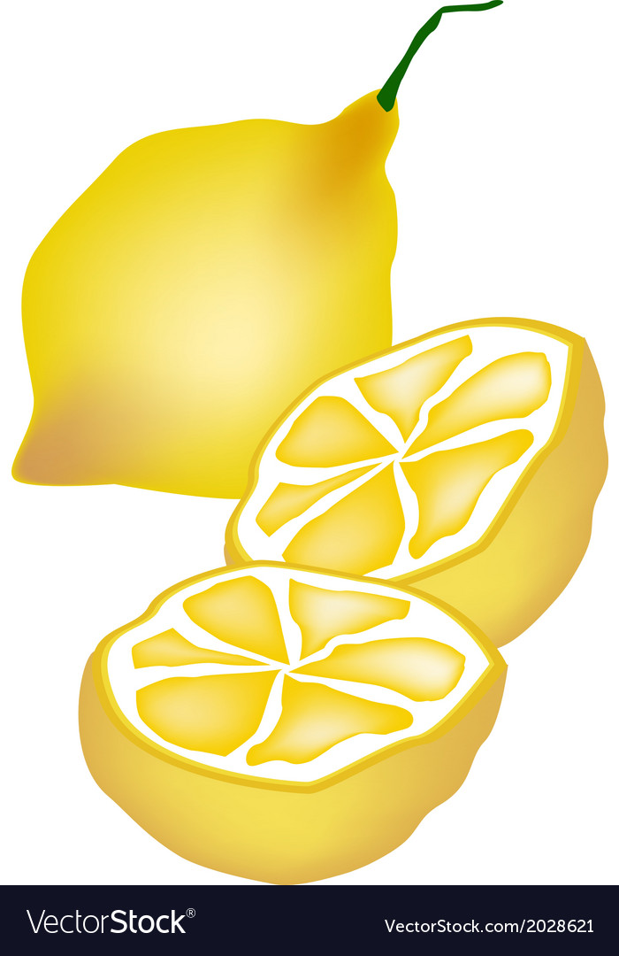 Fresh lemon and half on white background vector | Price: 1 Credit (USD $1)