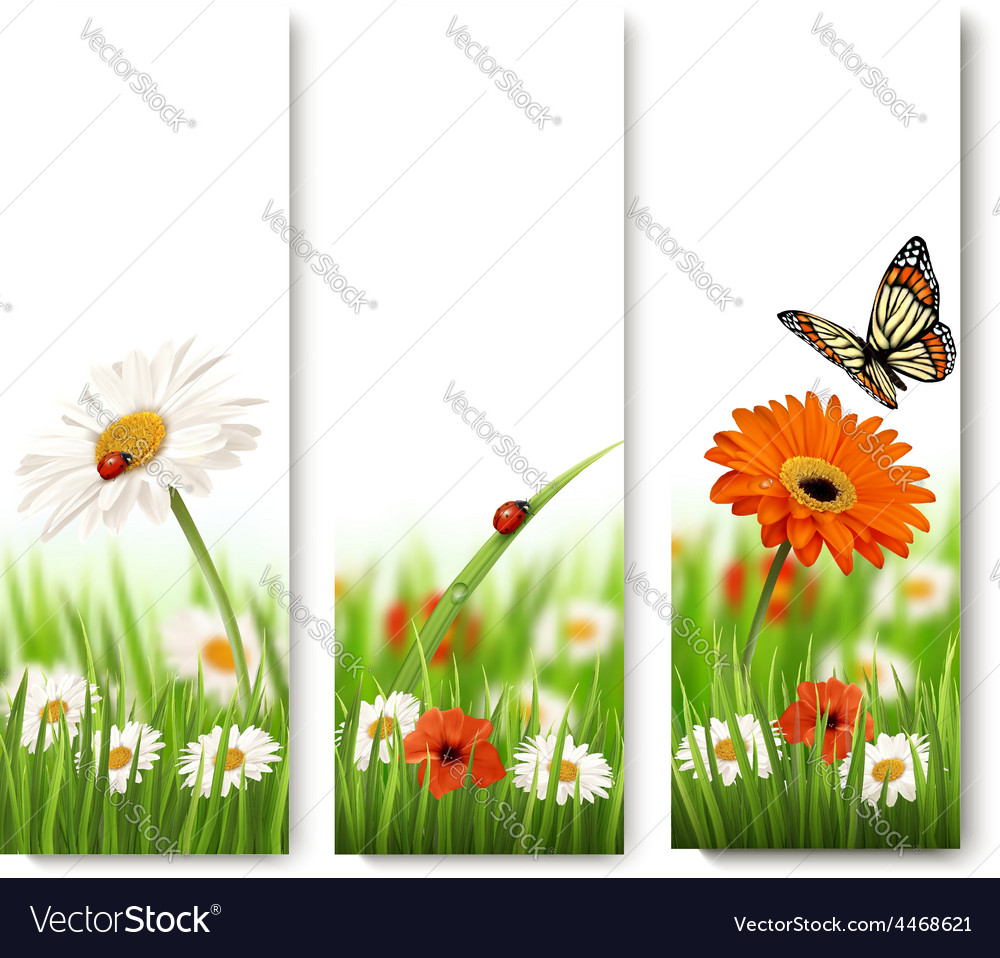 Summer nature banners with colorful flowers and vector | Price: 3 Credit (USD $3)