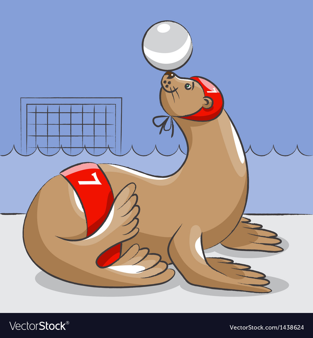 Seal - the water polo player vector | Price: 1 Credit (USD $1)